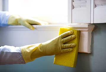 Local Cleaning Services In Venice CA